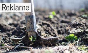 Råd og vejledning til let oprydning i haven