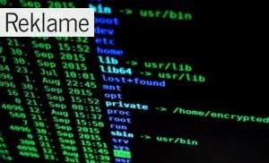 EU-databeskyttelsesforordning: Gør din virksomhed klar til d. 25. maj