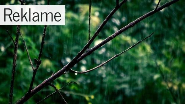 Udskift husets tagrender og bliv klar til efterårets mange regnfulde dage